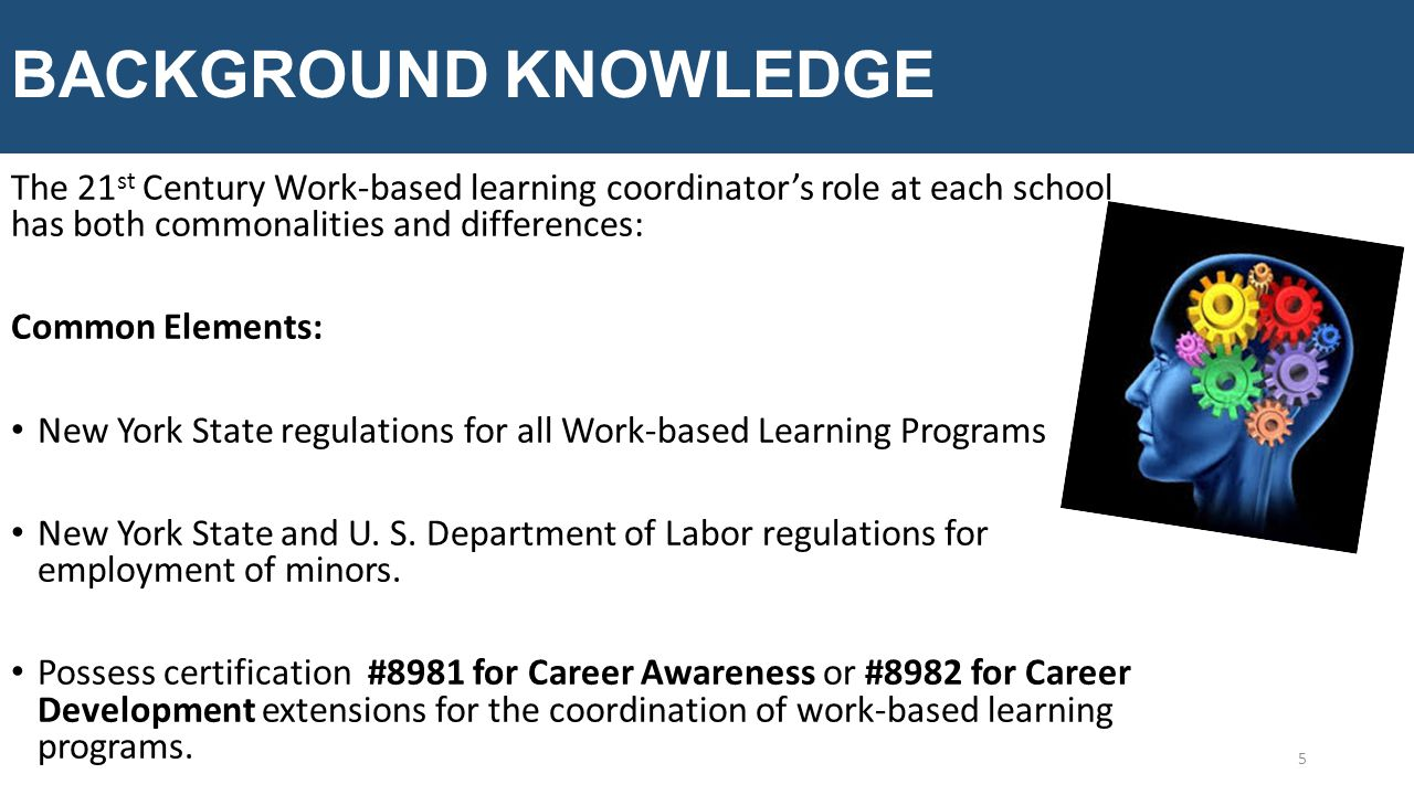 BACKGROUND KNOWLEDGE The 21 st Century Work-based learning coordinator's role at each school has both commonalities and differences: Common Elements: New York State regulations for all Work-based Learning Programs New York State and U.