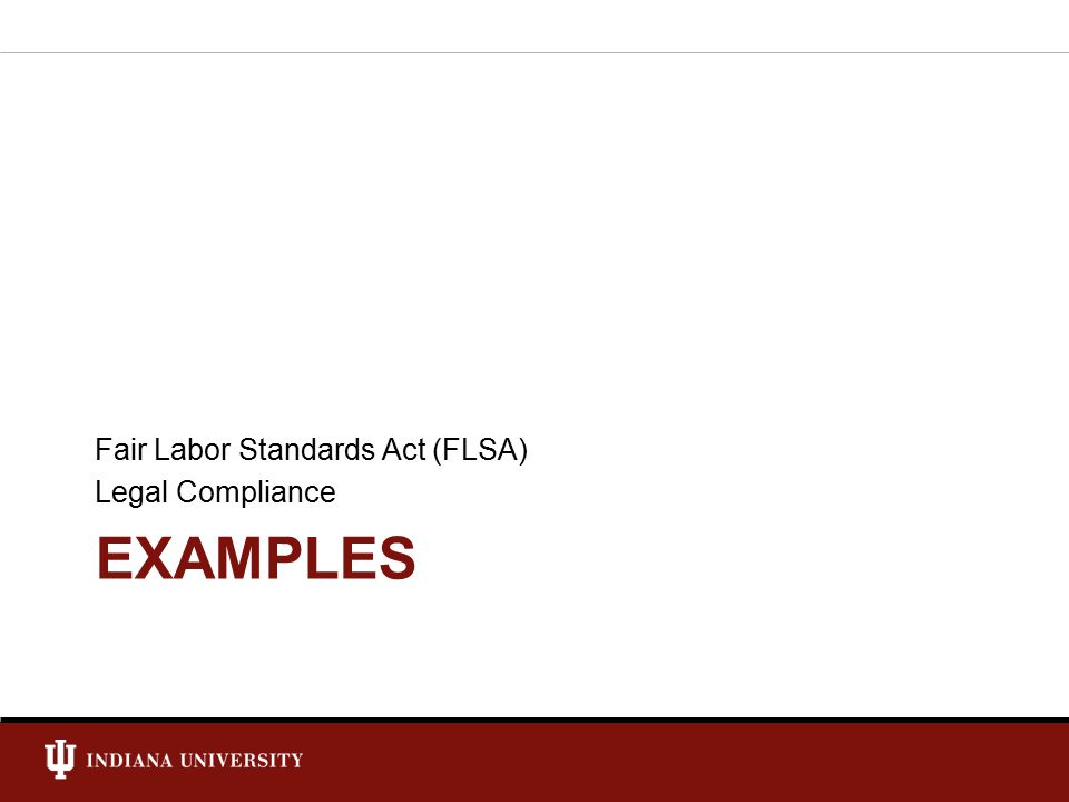EXAMPLES Fair Labor Standards Act (FLSA) Legal Compliance