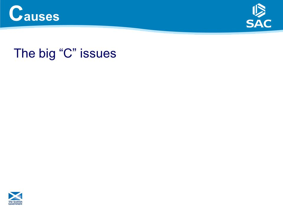 C auses The big C issues 10