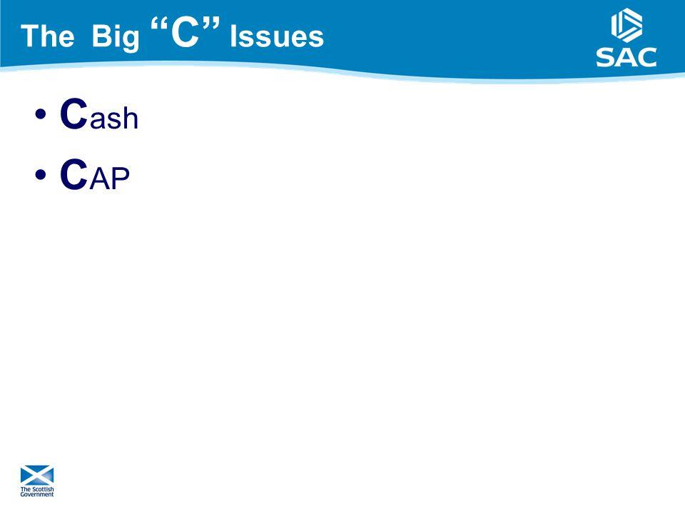 The Big C Issues C ash C AP 11