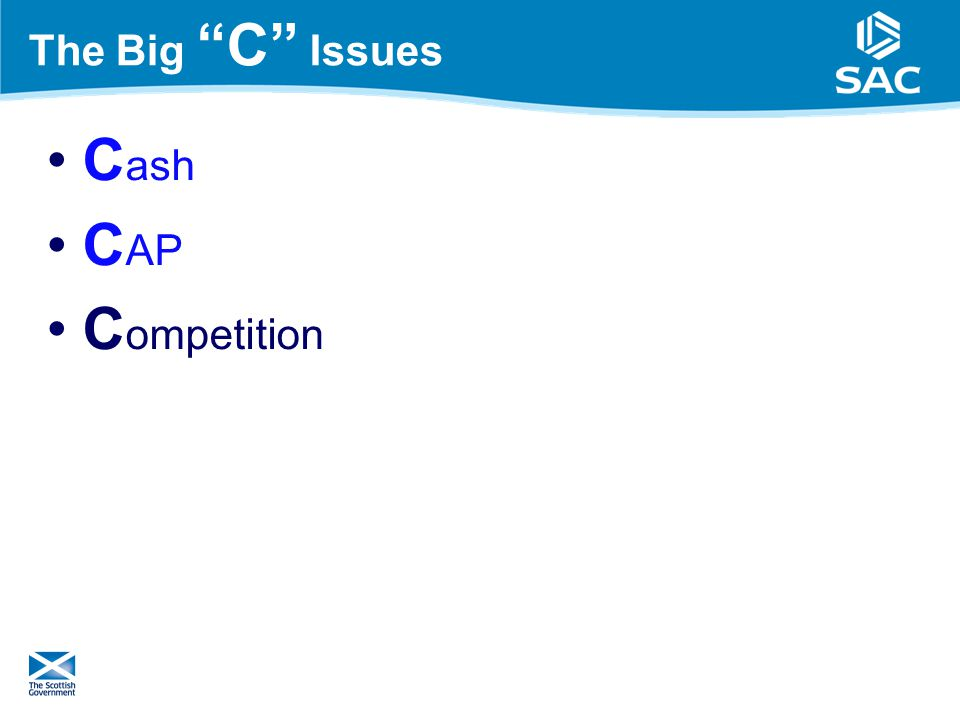 The Big C Issues C ash C AP C ompetition 14