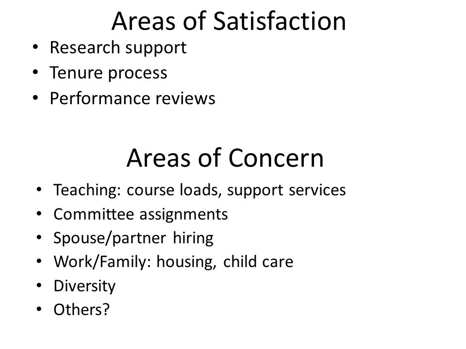 Areas of Satisfaction Teaching: course loads, support services Committee assignments Spouse/partner hiring Work/Family: housing, child care Diversity Others.