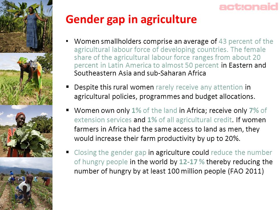 Gender gap in agriculture Women smallholders comprise an average of 43 percent of the agricultural labour force of developing countries.