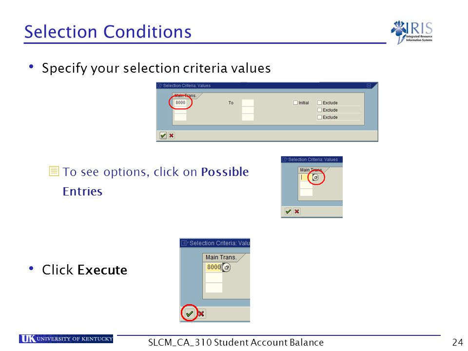 Selection Conditions Specify your selection criteria values  To see options, click on Possible Entries Click Execute 24SLCM_CA_310 Student Account Balance