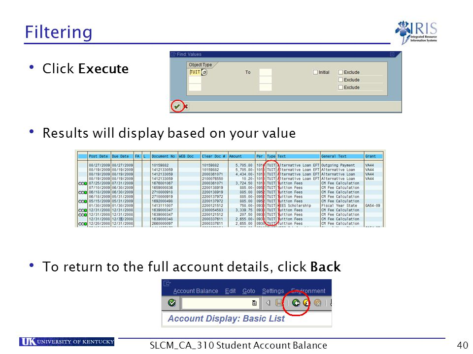 Filtering Click Execute Results will display based on your value To return to the full account details, click Back 40SLCM_CA_310 Student Account Balance