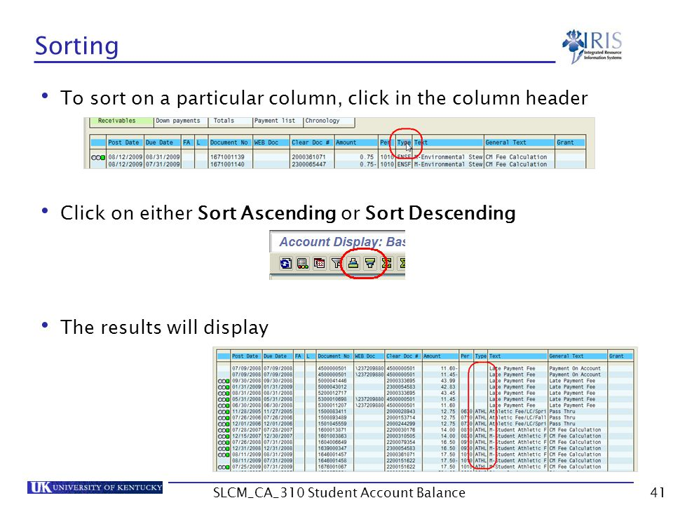 Sorting To sort on a particular column, click in the column header Click on either Sort Ascending or Sort Descending The results will display 41SLCM_CA_310 Student Account Balance