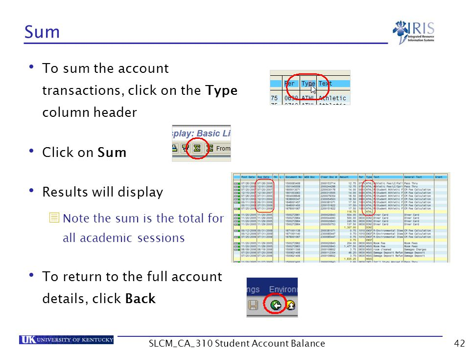 Sum To sum the account transactions, click on the Type column header Click on Sum Results will display  Note the sum is the total for all academic sessions To return to the full account details, click Back 42SLCM_CA_310 Student Account Balance