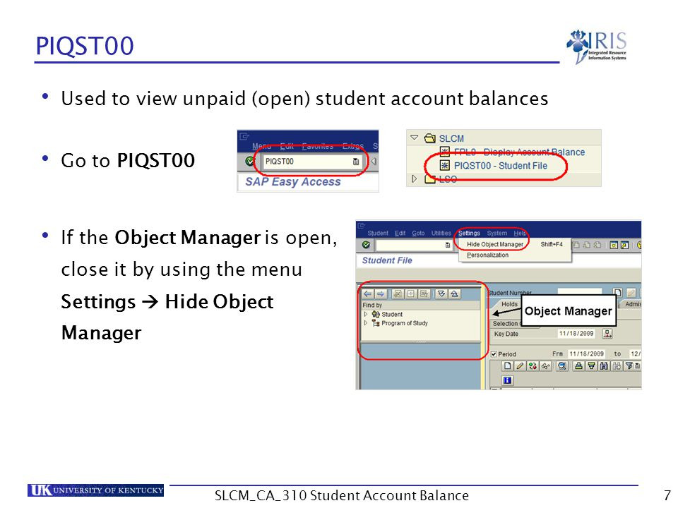 Unit 2 Exercise 2  Set recommended settings and save  Display detailed account balance 28SLCM_CA_310 Student Account Balance
