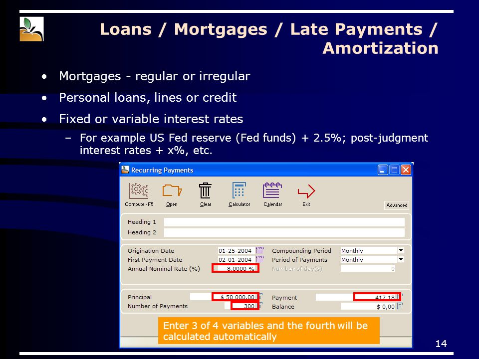 14 Loans / Mortgages / Late Payments / Amortization Mortgages - regular or irregular Personal loans, lines or credit Fixed or variable interest rates –For example US Fed reserve (Fed funds) + 2.5%; post-judgment interest rates + x%, etc.