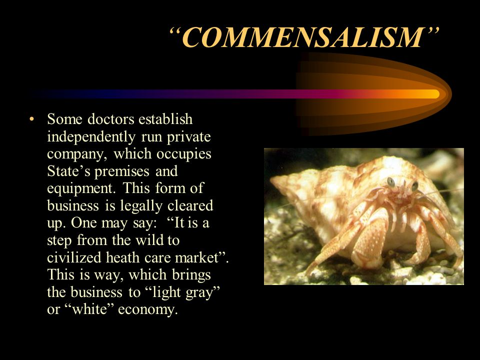 COMMENSALISM Some doctors establish independently run private company, which occupies State's premises and equipment.
