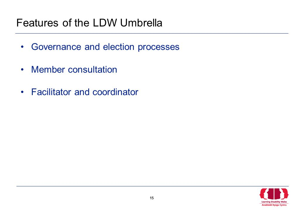 15 Features of the LDW Umbrella Governance and election processes Member consultation Facilitator and coordinator