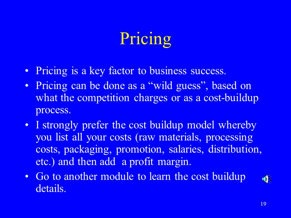 19 Pricing Pricing is a key factor to business success.