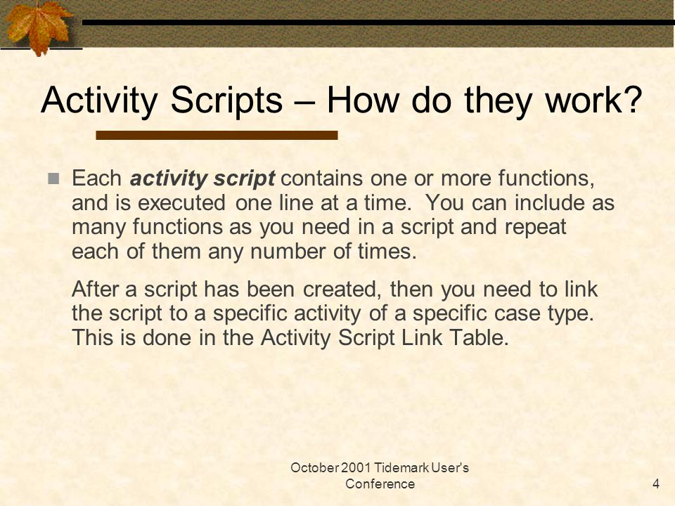 October 2001 Tidemark User s Conference4 Each activity script contains one or more functions, and is executed one line at a time.