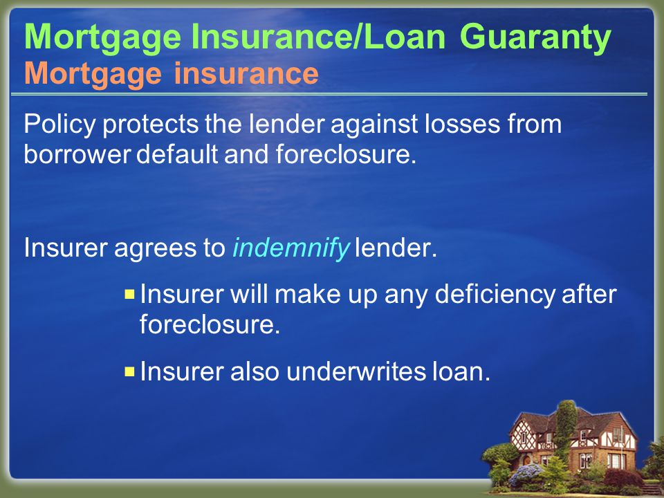 Mortgage Insurance/Loan Guaranty Policy protects the lender against losses from borrower default and foreclosure.