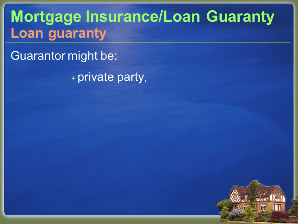 Mortgage Insurance/Loan Guaranty Guarantor might be:  private party, Loan guaranty