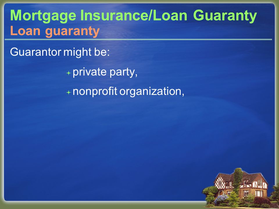 Mortgage Insurance/Loan Guaranty Guarantor might be:  private party,  nonprofit organization, Loan guaranty