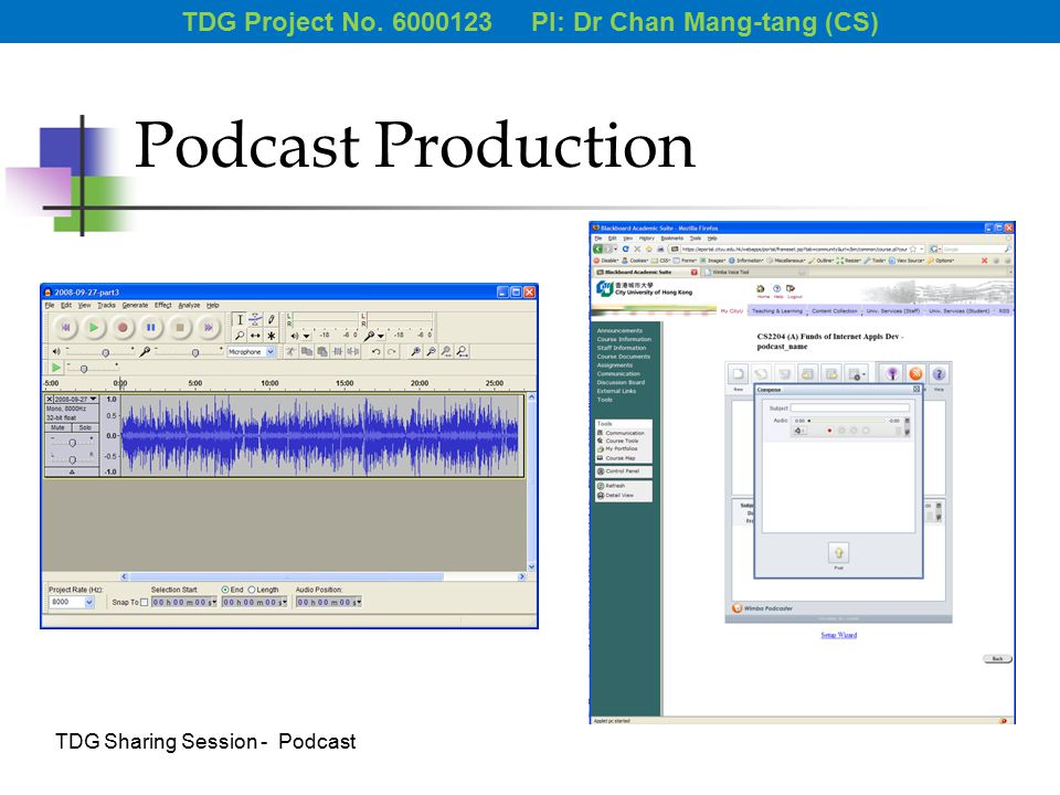 Podcast Production TDG Project No. 6000123 PI: Dr Chan Mang-tang (CS) TDG Sharing Session - Podcast