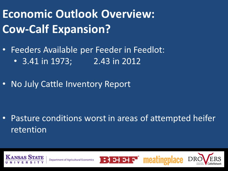 Economic Outlook Overview: Cow-Calf Expansion.
