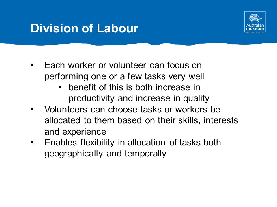 Each worker or volunteer can focus on performing one or a few tasks very well benefit of this is both increase in productivity and increase in quality Volunteers can choose tasks or workers be allocated to them based on their skills, interests and experience Enables flexibility in allocation of tasks both geographically and temporally Division of Labour