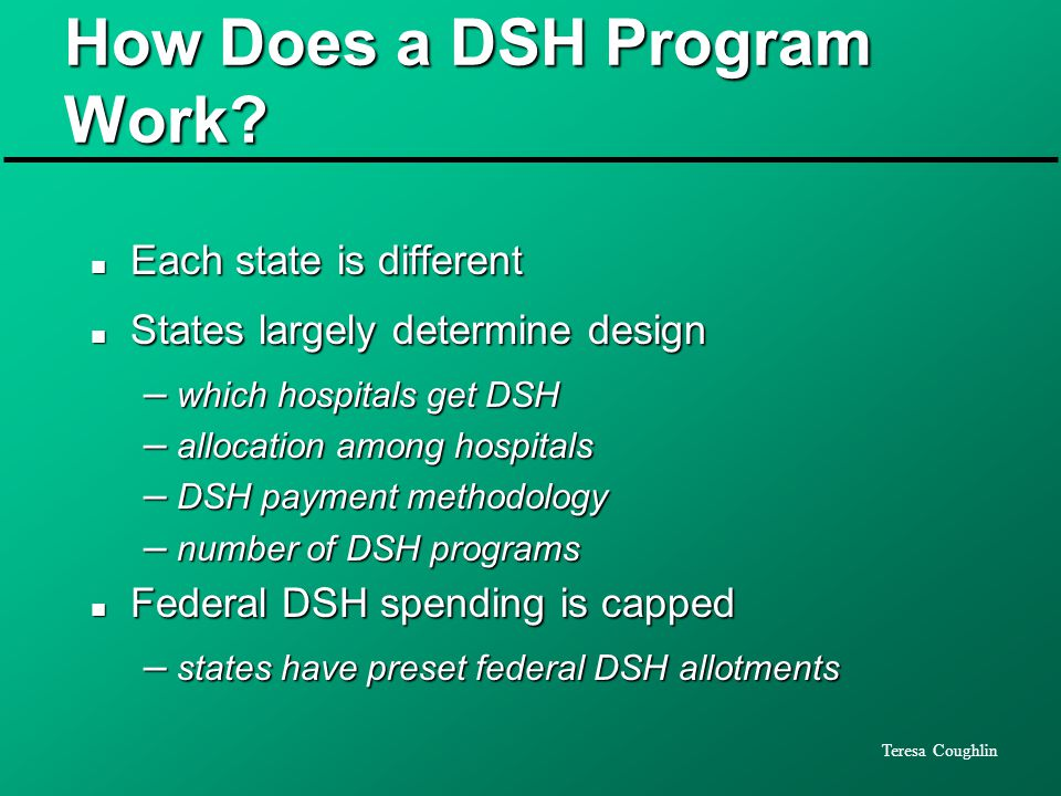 Teresa Coughlin How Does a DSH Program Work.