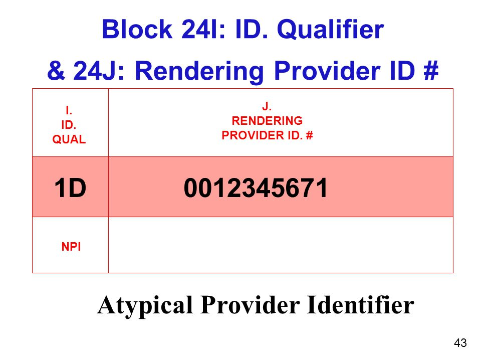 42 Rendering Provider ID # Block-24J  The shaded red area will contain the API OR  The open area will contain the NPI of the provider rendering the service.