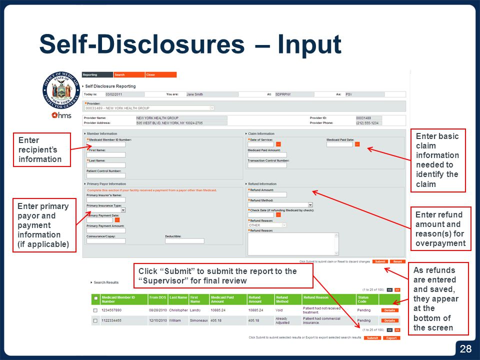Self-Disclosures – Input 28 Enter recipient's information Enter primary payor and payment information (if applicable) Enter basic claim information needed to identify the claim Enter refund amount and reason(s) for overpayment As refunds are entered and saved, they appear at the bottom of the screen Click Submit to submit the report to the Supervisor for final review