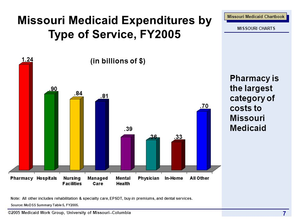 ©2005 Medicaid Work Group, University of Missouri--Columbia Missouri Medicaid Chartbook 7 Source: MoDSS Summary Table 5, FY2005.