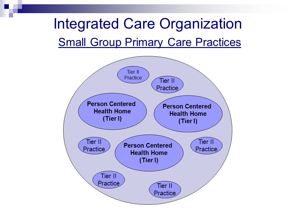 Tier II Practice Person Centered Health Home (Tier I) Tier II Practice Integrated Care Organization Small Group Primary Care Practices Tier II Practice Tier II Practice Tier II Practice Tier II Practice Person Centered Health Home (Tier I) Person Centered Health Home (Tier I)