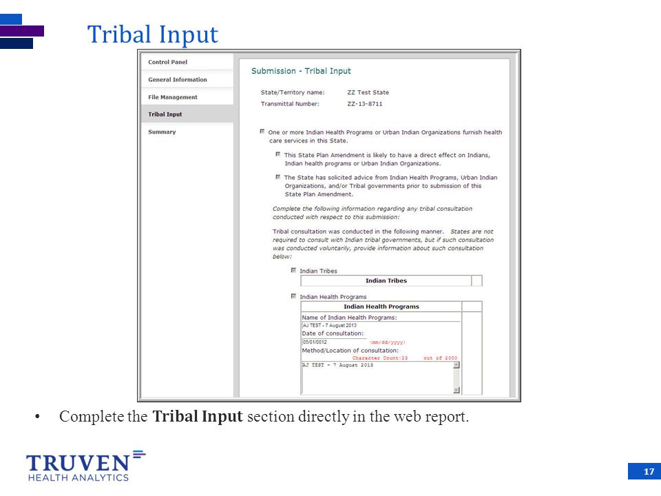 Tribal Input Complete the Tribal Input section directly in the web report. 17