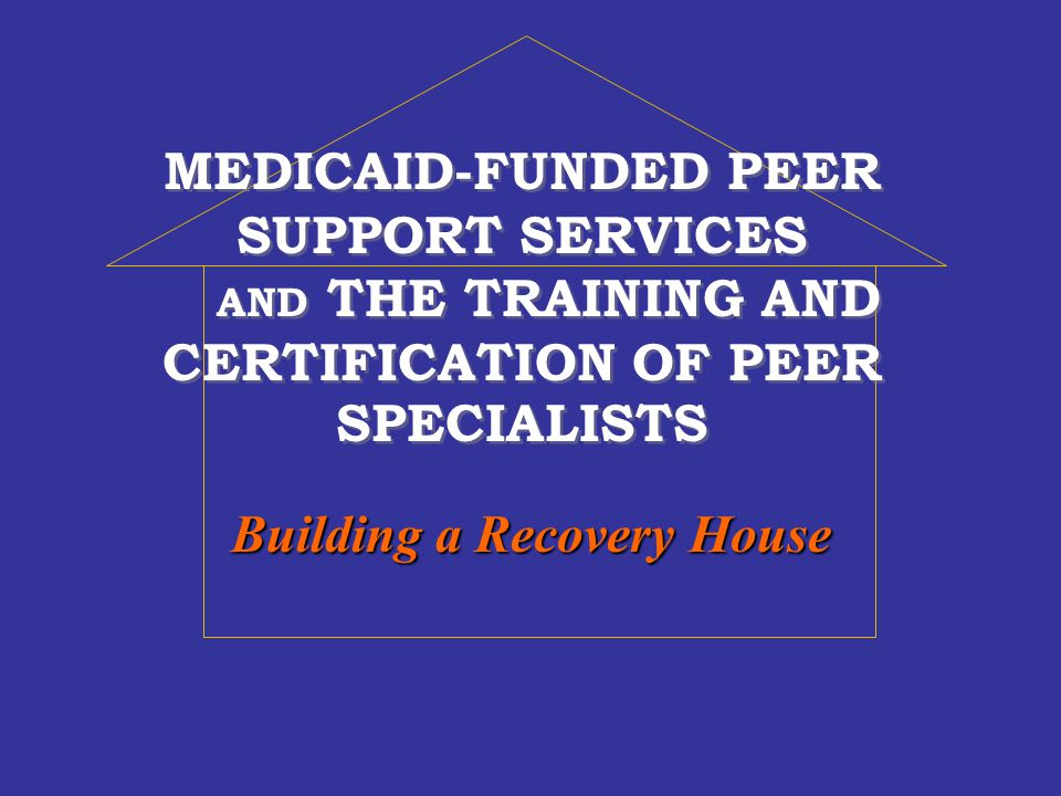 RecoveryandTransforming Mental Health Care FOUNDATION Consumer Values and Leadership Training and Certification of Peers External Review and Recovery Plans Under Construction: Evolving Roles of CPSs Evaluation As Tool for Change Barriers to Recovery and Seeking Solutions SouthCarolina Hawaii Mental Health and Medicaid Partnerships
