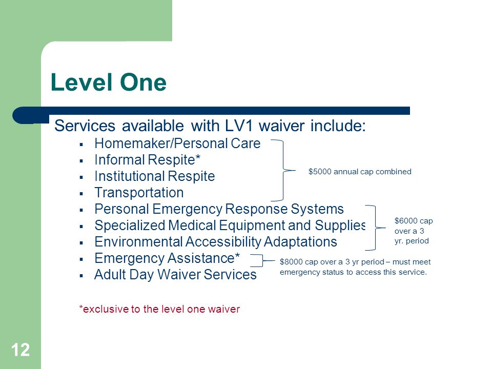 12 Level One Services available with LV1 waiver include:  Homemaker/Personal Care  Informal Respite*  Institutional Respite  Transportation  Personal Emergency Response Systems  Specialized Medical Equipment and Supplies  Environmental Accessibility Adaptations  Emergency Assistance*  Adult Day Waiver Services *exclusive to the level one waiver $5000 annual cap combined $6000 cap over a 3 yr.