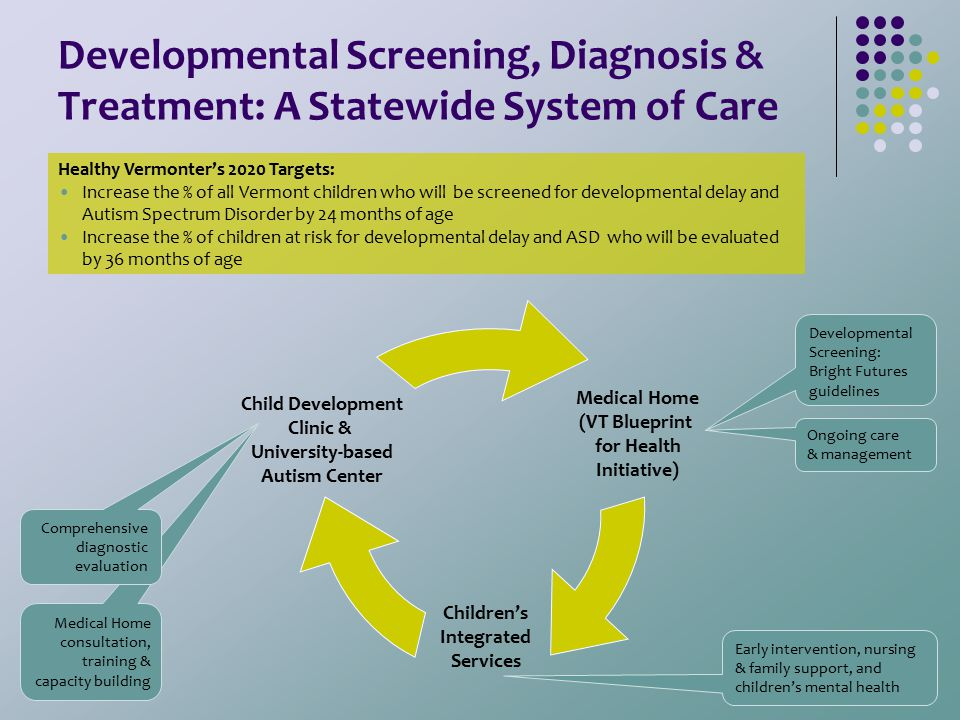 Medical Home consultation, training & capacity building Developmental Screening, Diagnosis & Treatment: A Statewide System of Care Medical Home (VT Bl