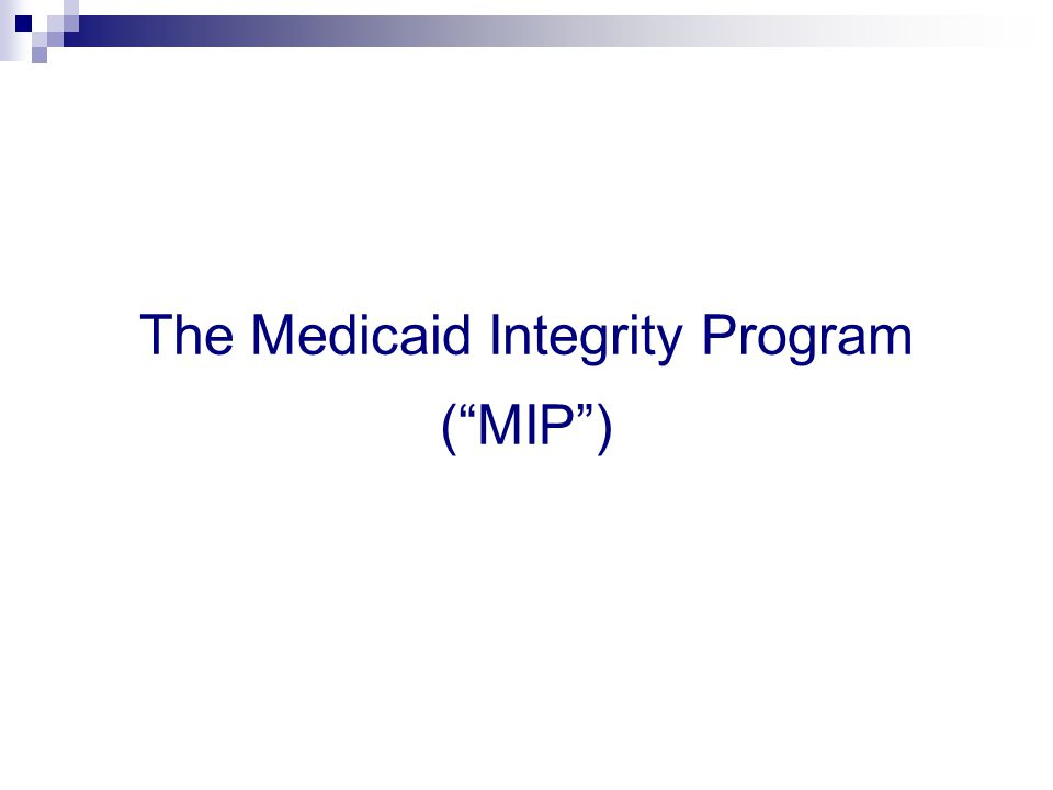 The Medicaid Integrity Program ( MIP )
