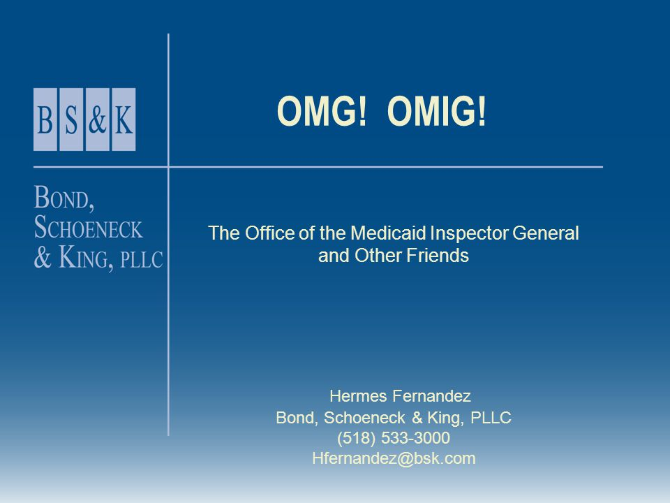 OMG! OMIG! The Office of the Medicaid Inspector General and Other Friends Hermes Fernandez Bond, Schoeneck & King, PLLC (518) 533-3000 Hfernandez@bsk.