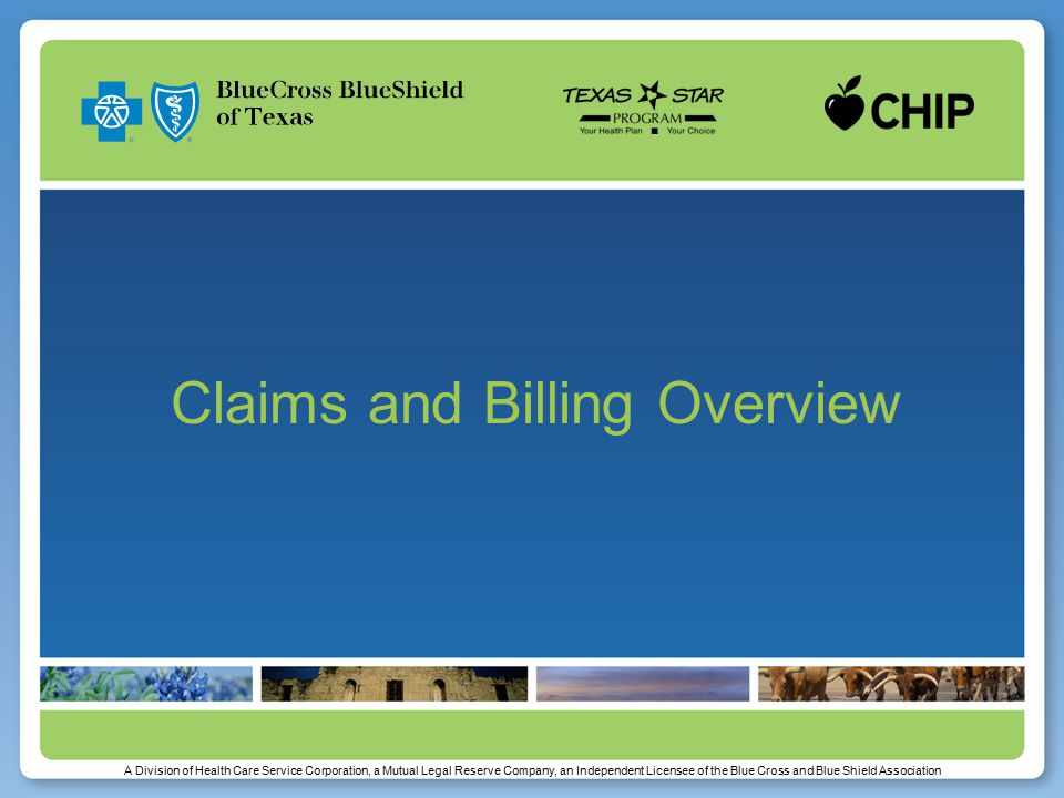 Submitting Electronic Claims Submit electronic professional claims in 837P format Texas Provider Identifier is not required and may delay adjudication of your claim Must utilize your National Provider Identifier (NPI) number when billing  Paper Rendering NPI field 24J and Billing NPI field 33a*  Electronic Rendering NPI Loop 2310B, NM109 qualifier field Billing NPI Loop 2010AA, NM109 qualifier field 14 *Solo providers must use rendering NPI in both 24J and 33a
