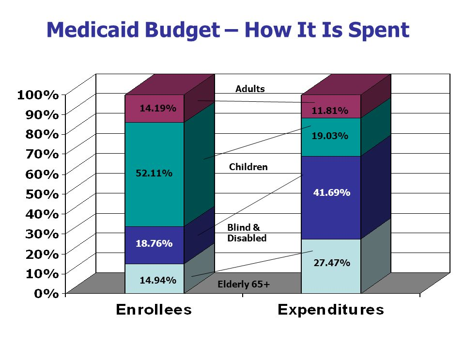 19 Medicaid Budget – How It Is Spent 14.94% 27.47% 18.76% 41.69% 52.11% 19.03% 14.19% 11.81% Elderly 65+ Blind & Disabled Children Adults