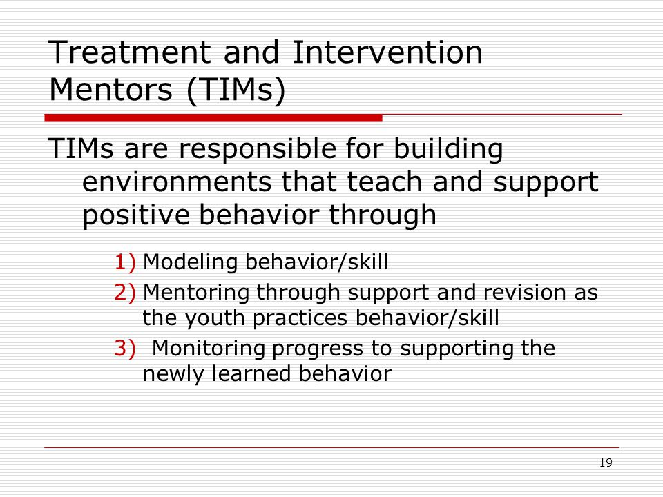 19 Treatment and Intervention Mentors (TIMs) TIMs are responsible for building environments that teach and support positive behavior through 1)Modeling behavior/skill 2)Mentoring through support and revision as the youth practices behavior/skill 3) Monitoring progress to supporting the newly learned behavior