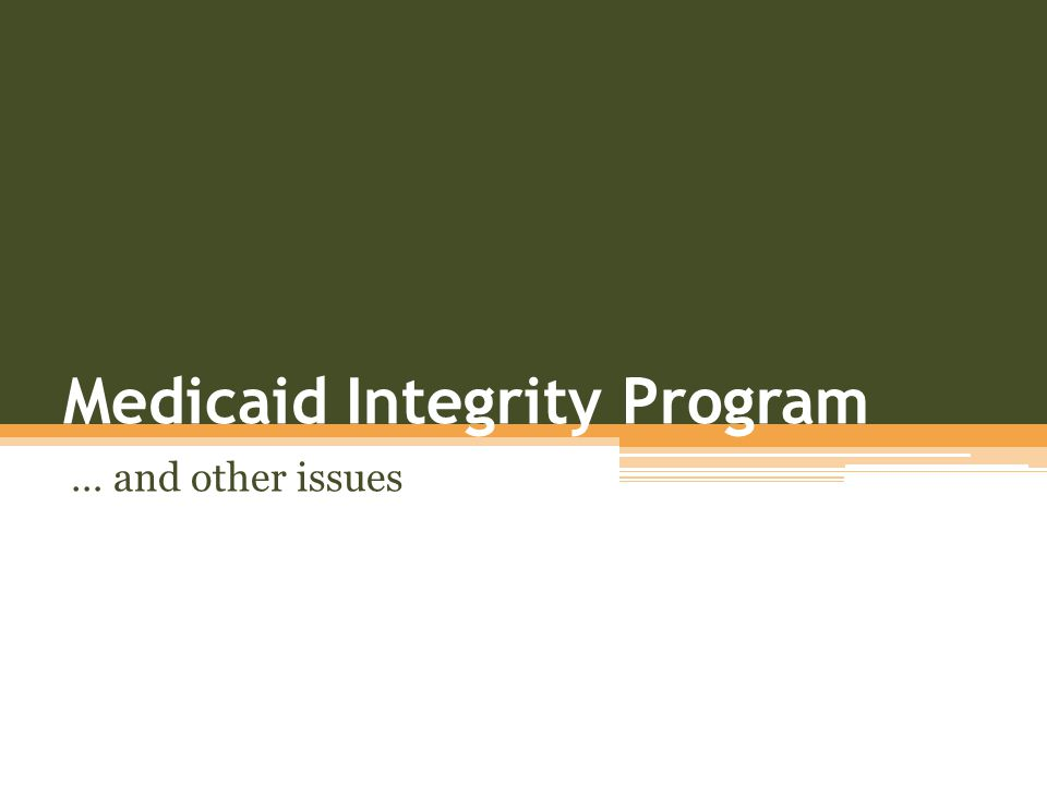 Medicaid Integrity Program … and other issues