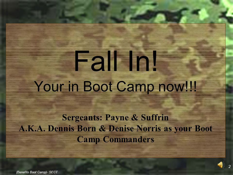 2 (Benefits Boot Camp)- SECT Fall In! Your in Boot Camp now!!! Sergeants: Payne & Suffrin A.K.A. Dennis Born & Denise Norris as your Boot Camp Command