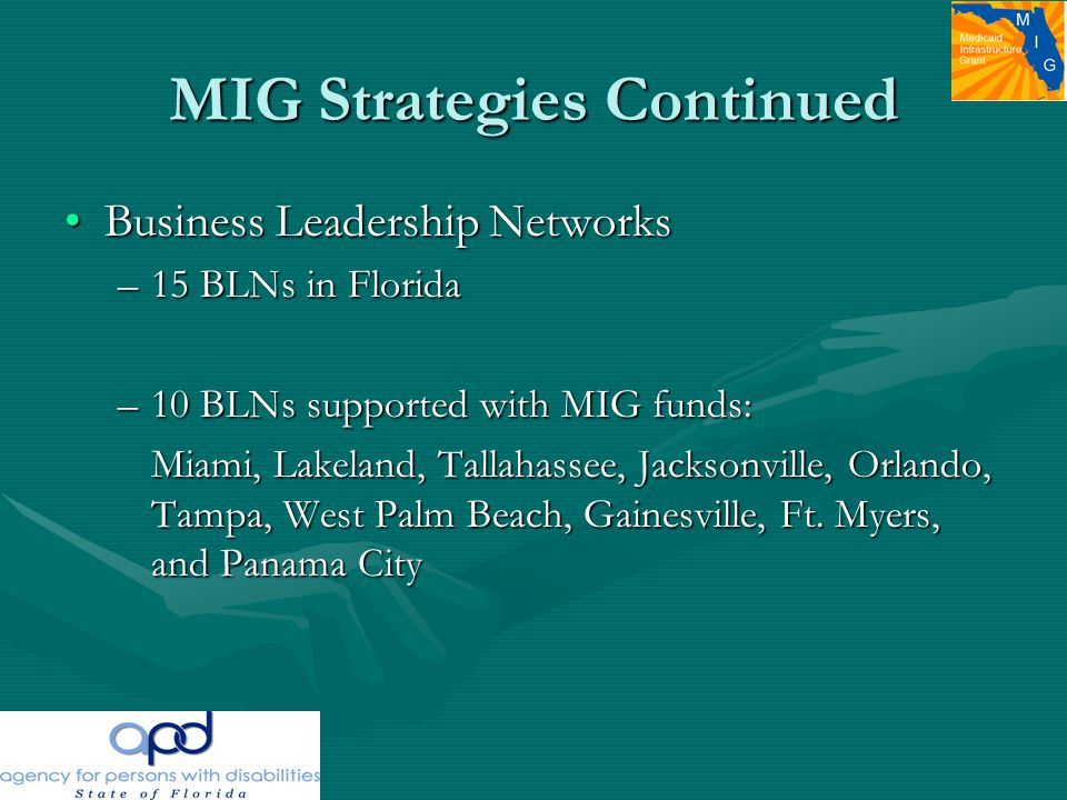 MIG Strategies Continued Business Leadership NetworksBusiness Leadership Networks –15 BLNs in Florida –10 BLNs supported with MIG funds: Miami, Lakeland, Tallahassee, Jacksonville, Orlando, Tampa, West Palm Beach, Gainesville, Ft.