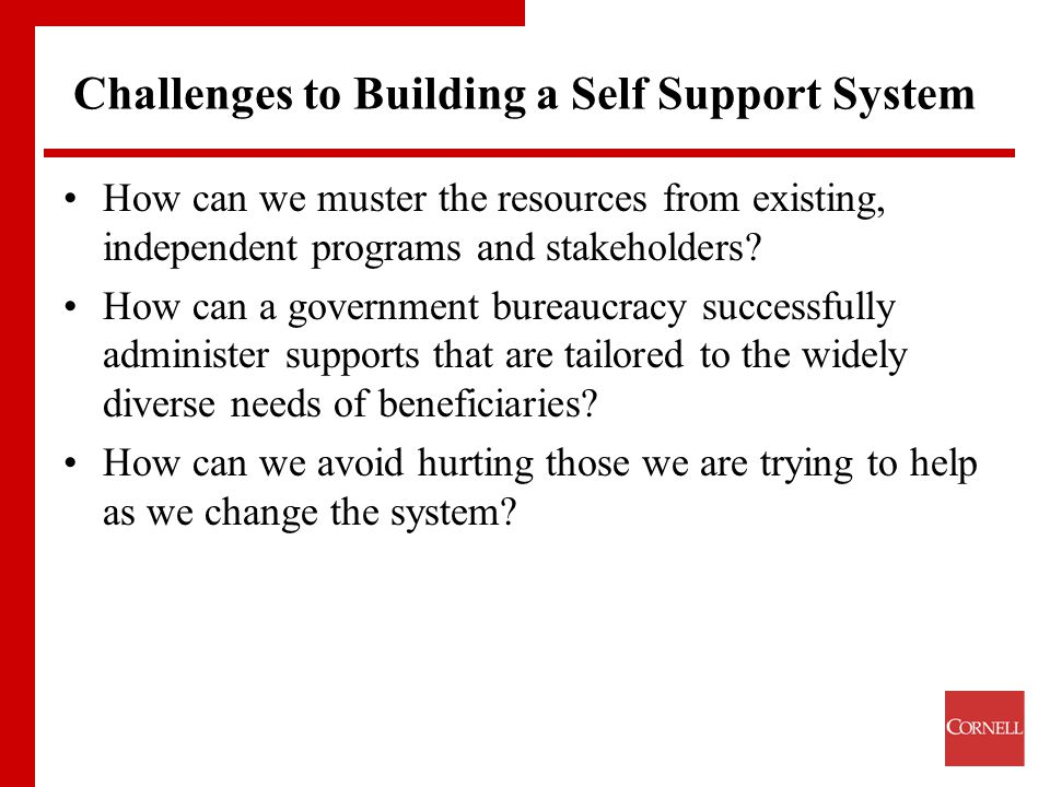 Challenges to Building a Self Support System How can we muster the resources from existing, independent programs and stakeholders.