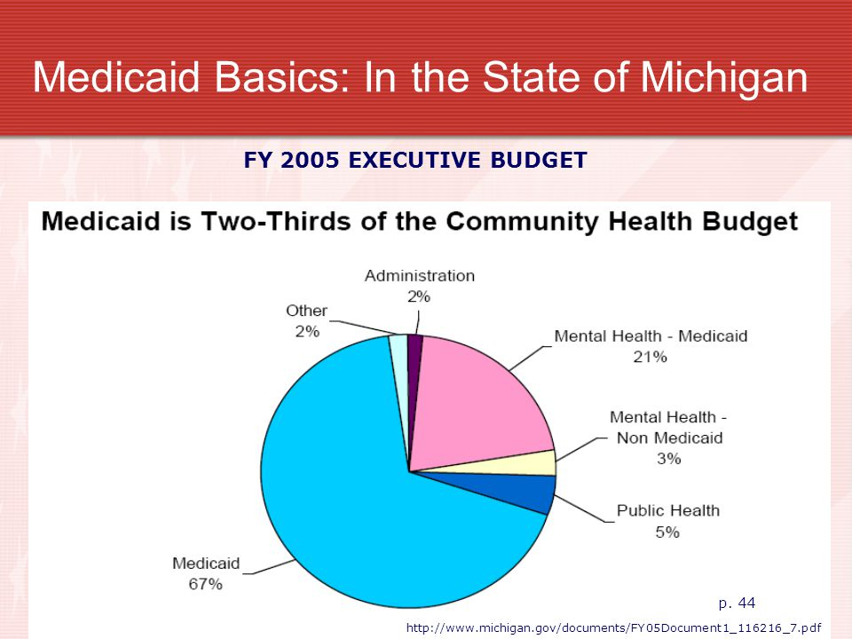 Medicaid Basics: In the State of Michigan FY 2005 EXECUTIVE BUDGET p. 44 http://www.michigan.gov/documents/FY05Document1_116216_7.pdf