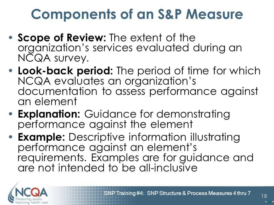 18 SNP Training #4: SNP Structure & Process Measures 4 thru 7 Components of an S&P Measure Scope of Review: The extent of the organization's services