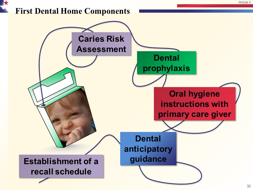 First Dental Home Components 30 Module 6 Caries Risk Assessment Dental prophylaxis Oral hygiene instructions with primary care giver Dental anticipato