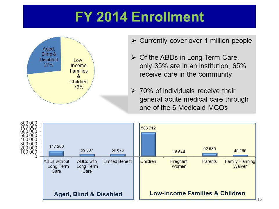 Aged, Blind & Disabled Low-Income Families & Children 12 FY 2014 Enrollment  Currently cover over 1 million people  Of the ABDs in Long-Term Care, o