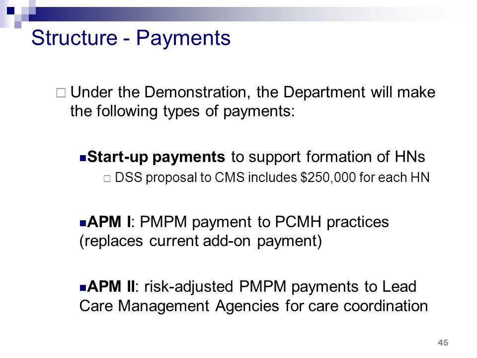 Structure - Payments  Under the Demonstration, the Department will make the following types of payments: Start-up payments to support formation of HNs  DSS proposal to CMS includes $250,000 for each HN APM I: PMPM payment to PCMH practices (replaces current add-on payment) APM II: risk-adjusted PMPM payments to Lead Care Management Agencies for care coordination 45