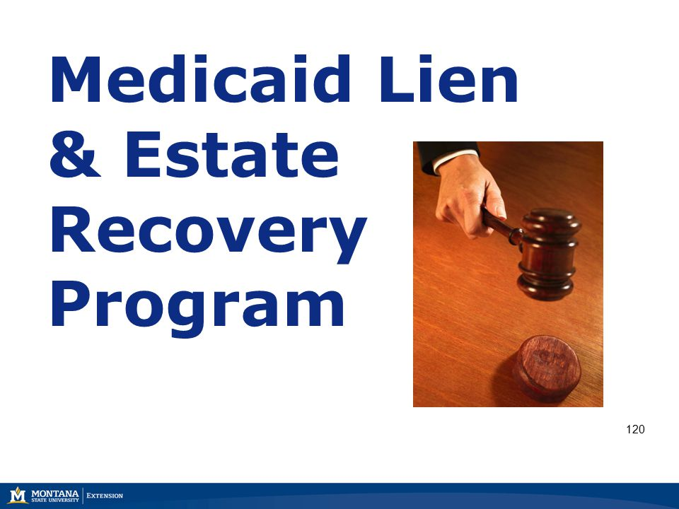 Medicaid Lien & Estate Recovery Program 120