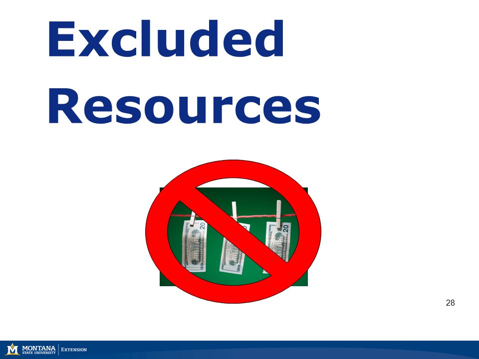Excluded Resources 28
