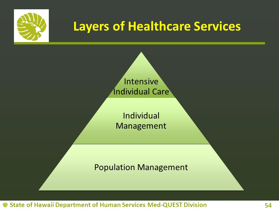State of Hawaii Department of Human Services Med-QUEST Division Layers of Healthcare Services 54 Intensive Individual Care Individual Management Popul