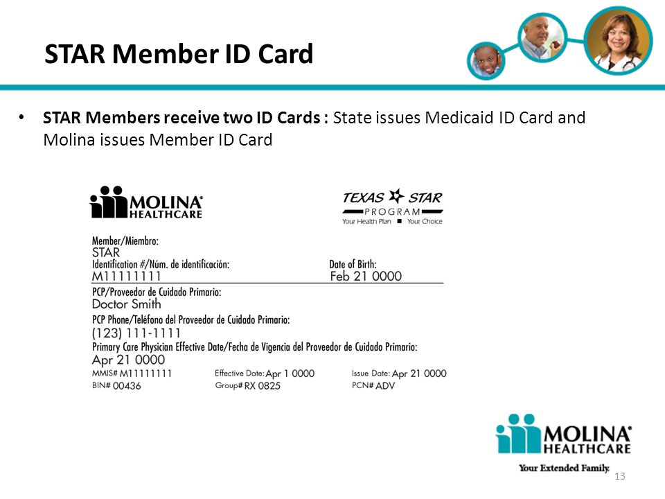 Headline Goes Here Item 1 Item 2 Item 3 STAR Member ID Card STAR Members receive two ID Cards : State issues Medicaid ID Card and Molina issues Member